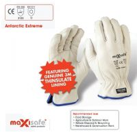 Maxisafe Thinsulate Lined Rigger